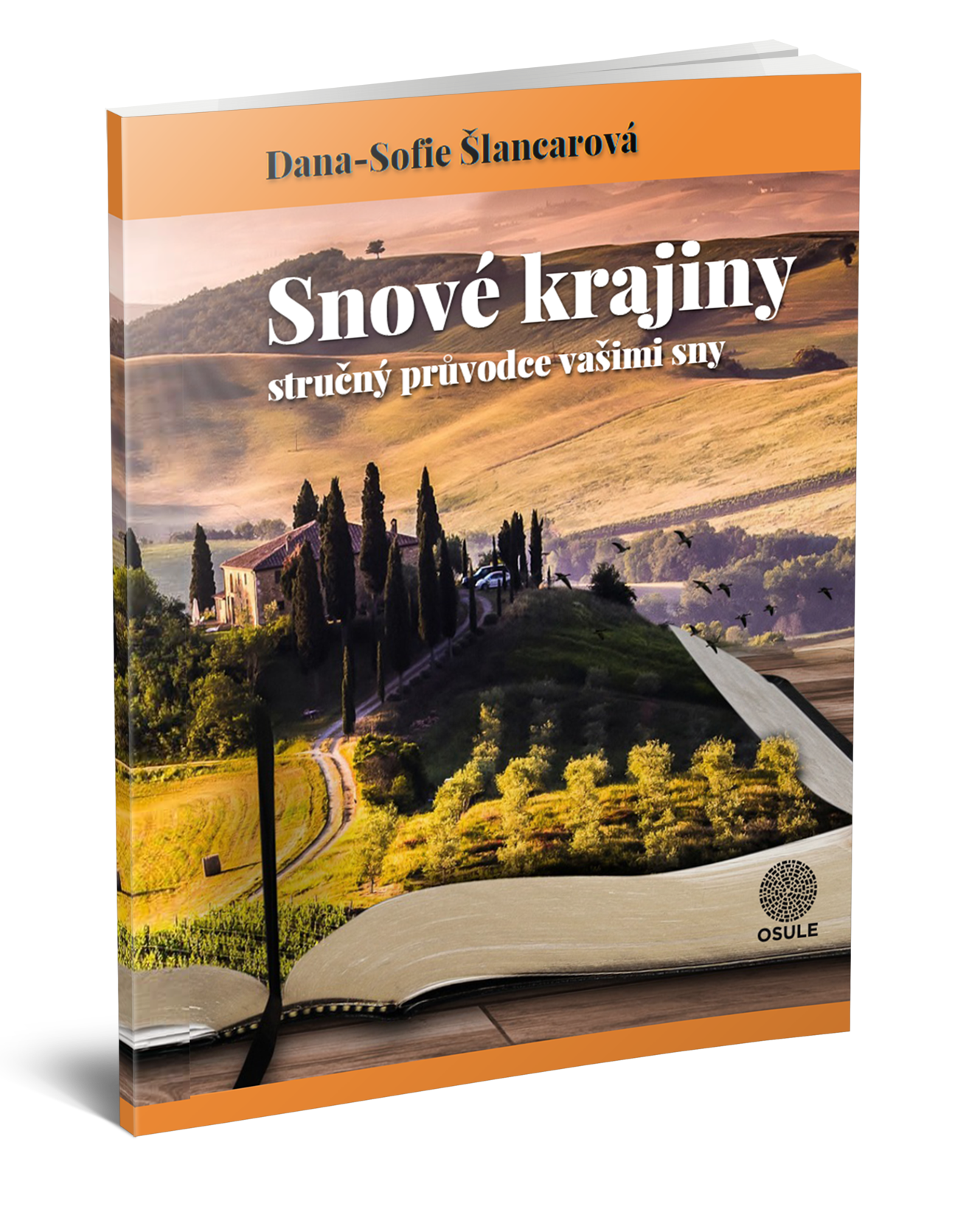 Naučte se interpretovat své sny s e-bookem Snové krajiny!